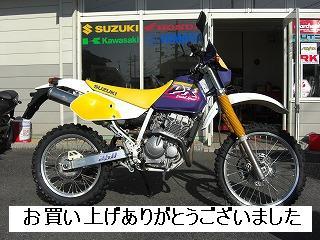 PO20090127_0018.jpg