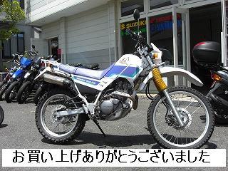 ヤマハ セロー225W