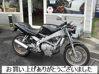 ホンダ VT250 SPADA
