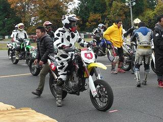 2010年11月28日 琵琶湖スポーツランド 牛